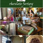 theo chocolate tour