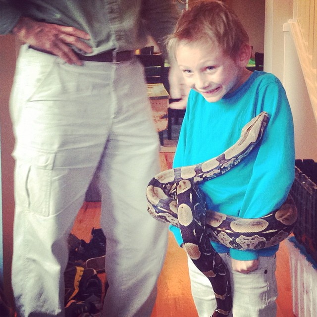 Biggie getting stomach strangled by a snake this afternoon!  He's a brave one, this one.